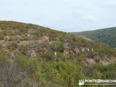 Parque Nacional Monfragüe - Reserva Natural Garganta de los Infiernos-Jerte;viajes organizados madr
